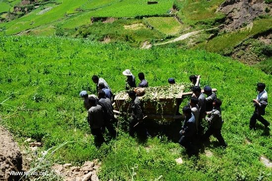 People carry a coffin during a funeral held for an 84-year-old villager killed in the dealy earthquake in Lalu Village, Hetuo Township, Minxian County, northwest China's Gansu Province, July 23, 2013. The death toll in the 6.6-magnitude earthquake that hit Gansu has risen to 94, local authorities said Tuesday. (Xinhua/Jin Liangkuai)