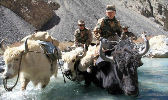 """Chinese soldiers ride yaks and patrol border between China and Pakistan. The border features the Khunjerab Pass, which is the highest paved international border crossing in the world and the highest point on the Karakoram Highway. In Persian, Khunjerab means """"valley of death"""" because of its extreme climate.[Photo/ Weibo account of PLA Daily]"""