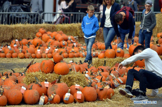 A pop-up pumpkin patch is set up for Halloween in Times Square as a promotion for the App Google Photos, in New York, the United States, Oct. 29, 2015. Visitors can pick from tons of free pumpkins and enjoy live pumpkin carvings. (Xinhua/Wang Lei)