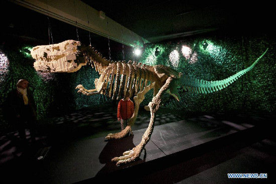 A mother and her son look at Dinosaur Skeleton, an artwork by American artist Nathan Sawaya, at the exhibition