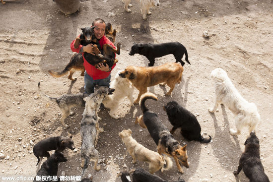 Wang Yan and dogs at the rescue base.