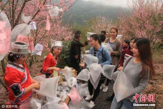 Adult Guide in Qingyuan