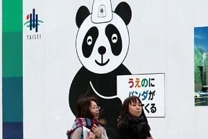 Panda fever in Japan
