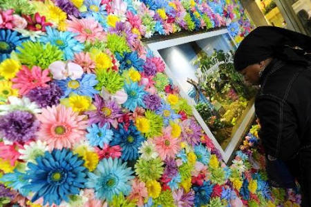 Macy's Flower Show kicks off in New York