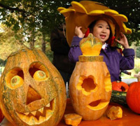 Pumpkin lamp creation