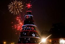 Christmas tree in Sao Paulo
