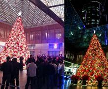 Christmas tree light-ups