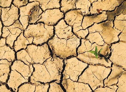 Severe drought hits China (2011.2)