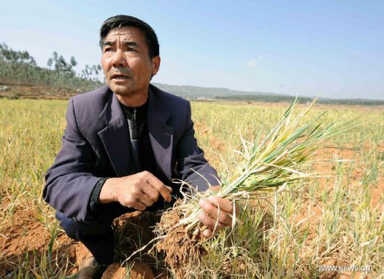 Drought affects 6 mln in SW China's Yunnan