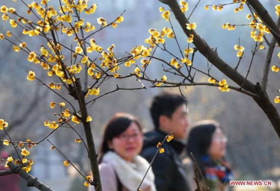 Spring drawing near in Wuhan